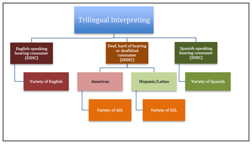Complexities of Trilingual Interpreting